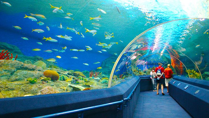 Underwater World Pattaya 2
