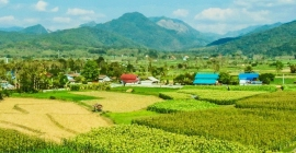 Ghé thăm 7 nông trại hấp dẫn trong hành trình...