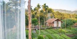 Du lịch Thái Lan không nên bỏ qua Baan Rai...