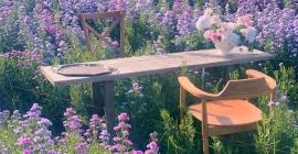 Thả dáng giữa hàng triệu bông hoa tại I Love...