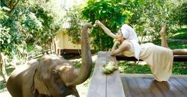 The Chai Lai Orchid Resort - điểm nghỉ dưỡng lý...